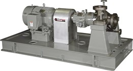 API 610 11th Edition Horizontal Process Pump OH2 - Model PWH